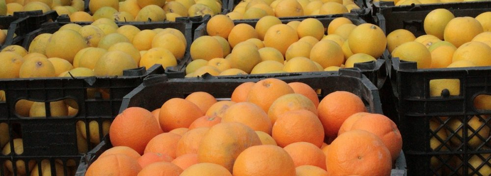 Tropical, Subtropical Fruit Exports at $500m