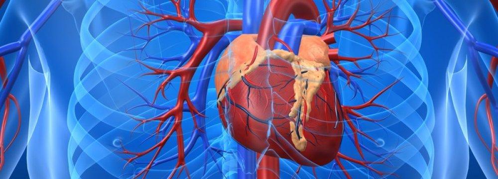 CVDs Cause One-Third of Deaths Worldwide