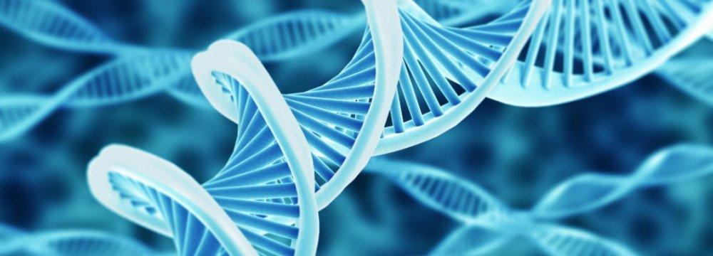 Genetic Database  in 6 Provinces