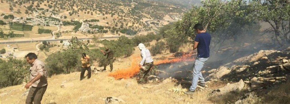 Wildfires Erupt Again in Kohgilouyeh - Boyerahmad