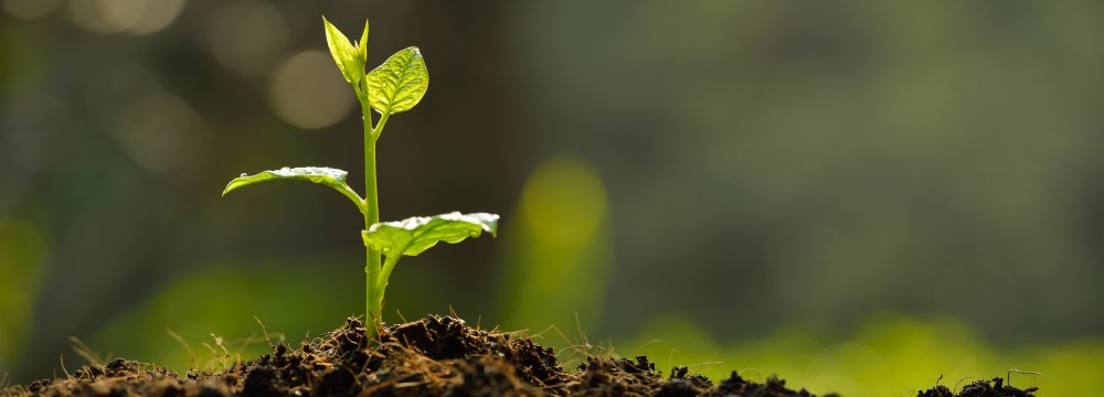 World Underscores  Soil Conservation