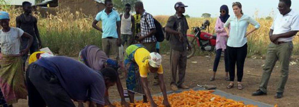 Ghana Economic Outlook Positive