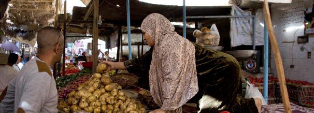 Egypt Making Slow, Tentative Progress