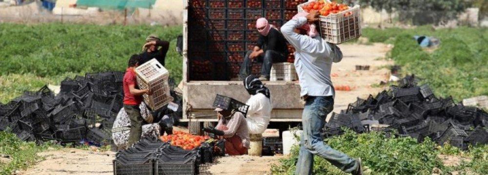 Jordan Making Progress, But Challenges Persist