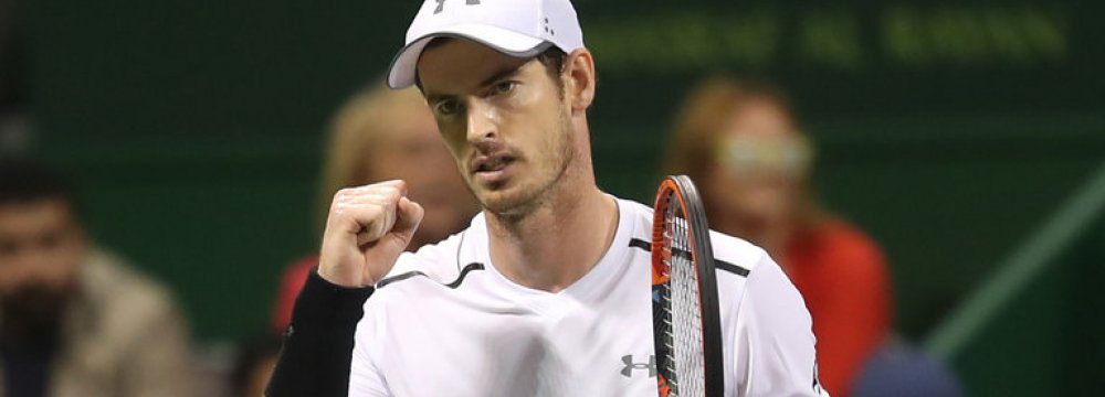 Andy Murray Will Return for Australian Open
