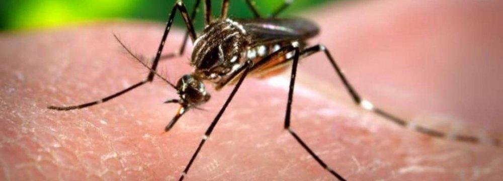 Second Zika Case in Russia