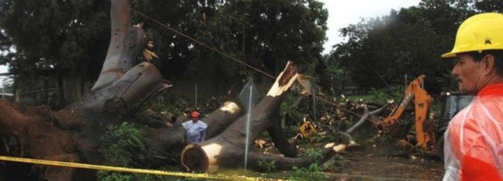 Hurricane Otto Kills 3 in Panama,  Threatens Central America