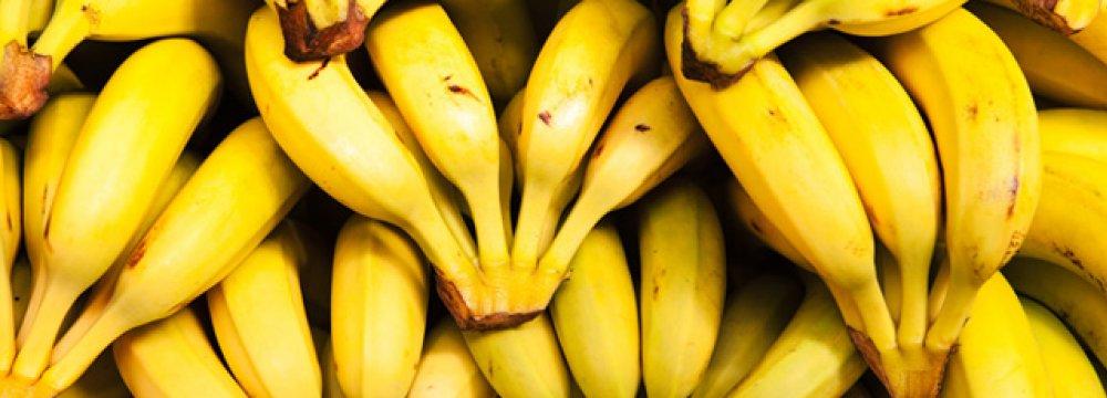 Banana Imports Down 63%
