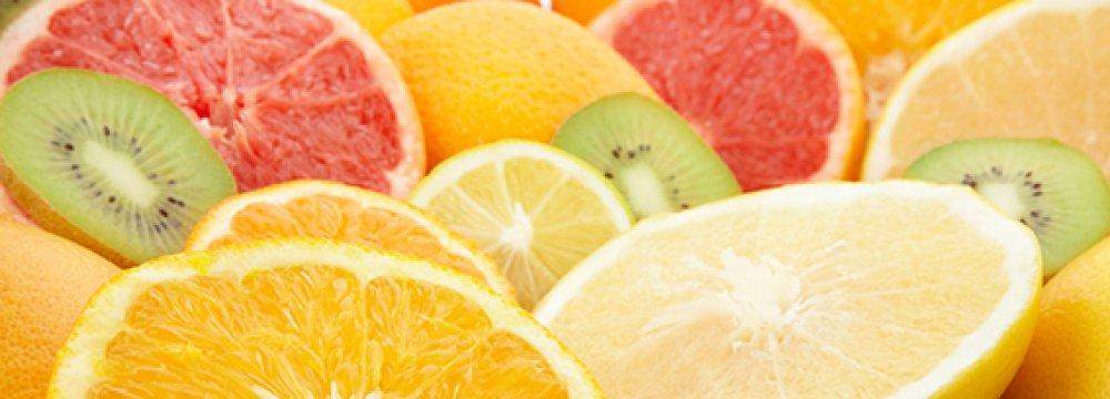 Mazandaran Citrus Exports to Reach 20,000 Tons