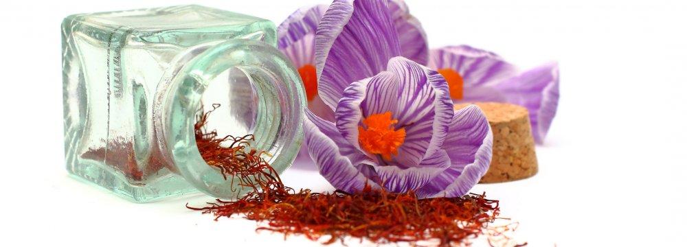Allelopathic Effects of Saffron
