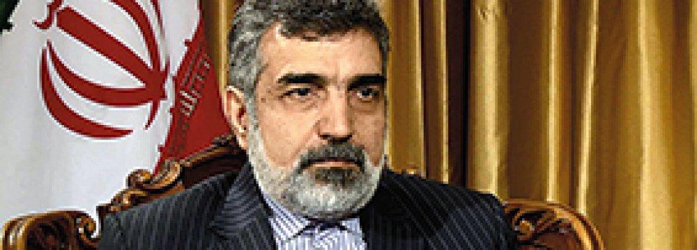 Tehran, Tokyo Discuss Nuclear Coop.