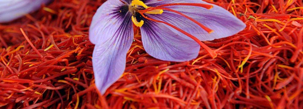UAE Biggest Destination for Saffron Exports