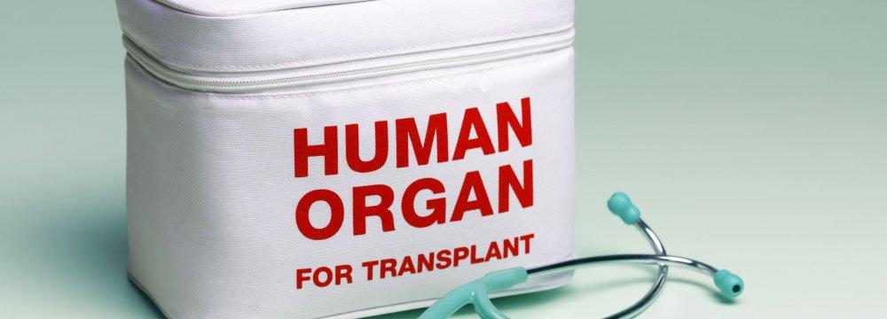Organ Transplants Free