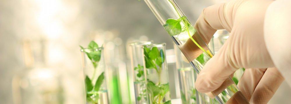 Iran-Lebanon Plant Biotech Cooperation
