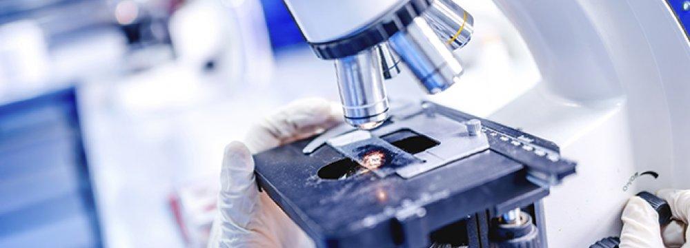 Royan Summer School on Stem Cells