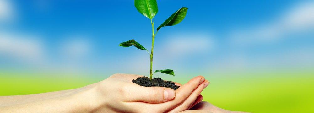 Raising Environmental Awareness in Schools