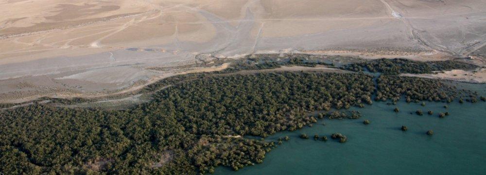 Qeshm Enlisting JICA Help to Develop Travel Industry