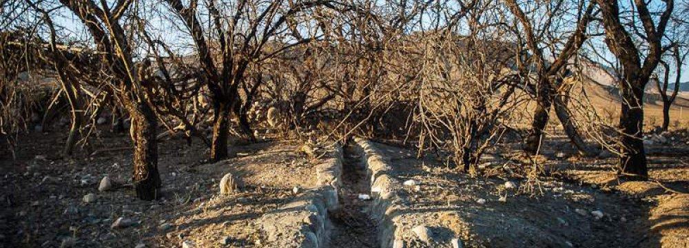 Illegal Water Wells Draining Kerman Dry