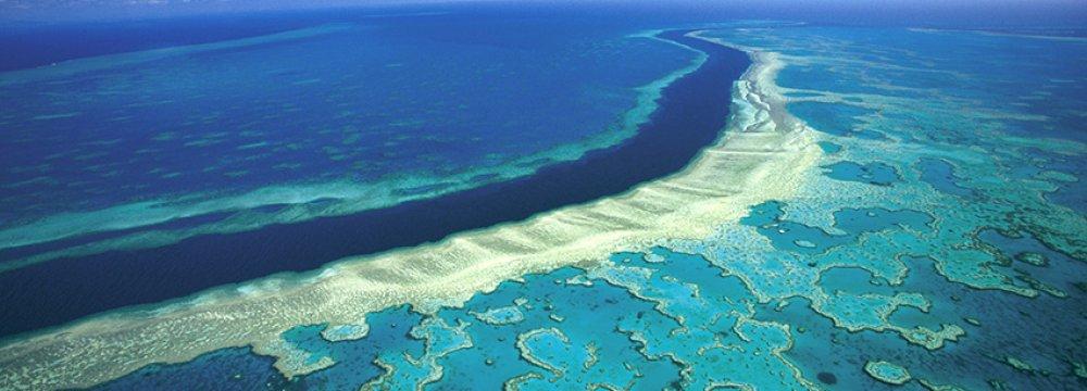 UN Alters Climate Report Under Aussie Pressure!