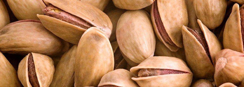 Iran Controls 50% of Int'l Pistachio Market