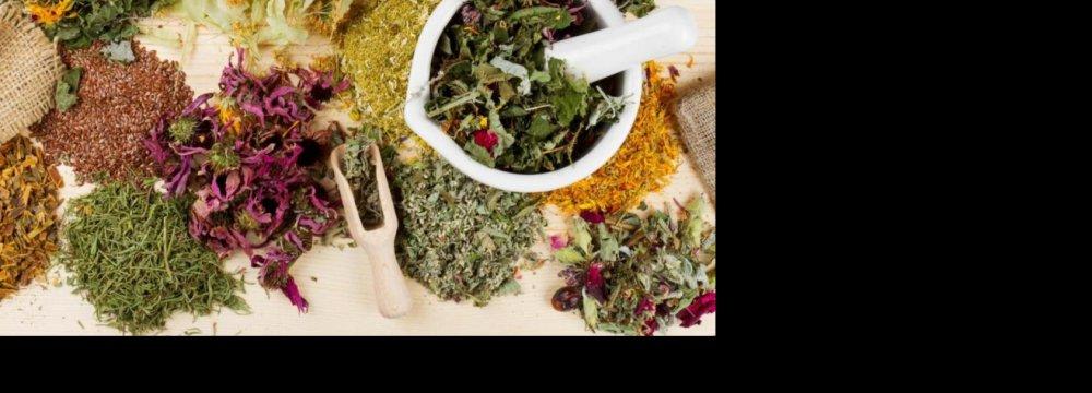 Medicinal Plants Expo