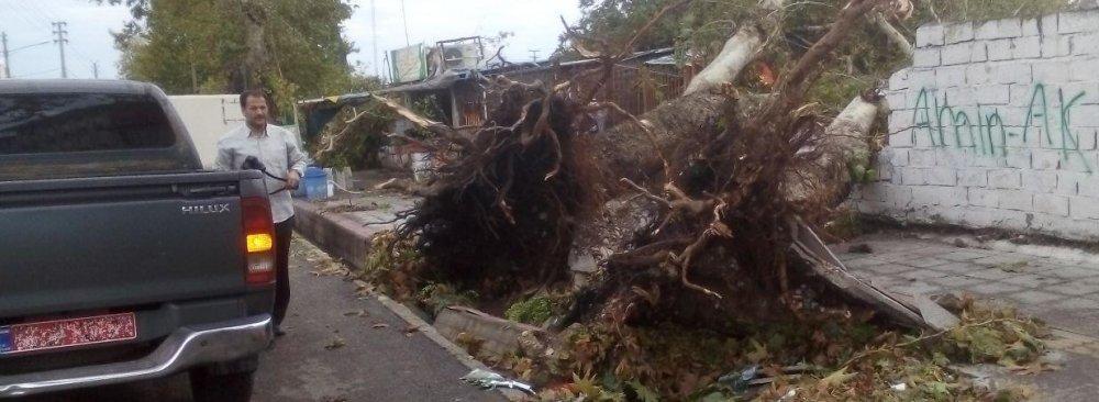 4 Die in Flash Floods