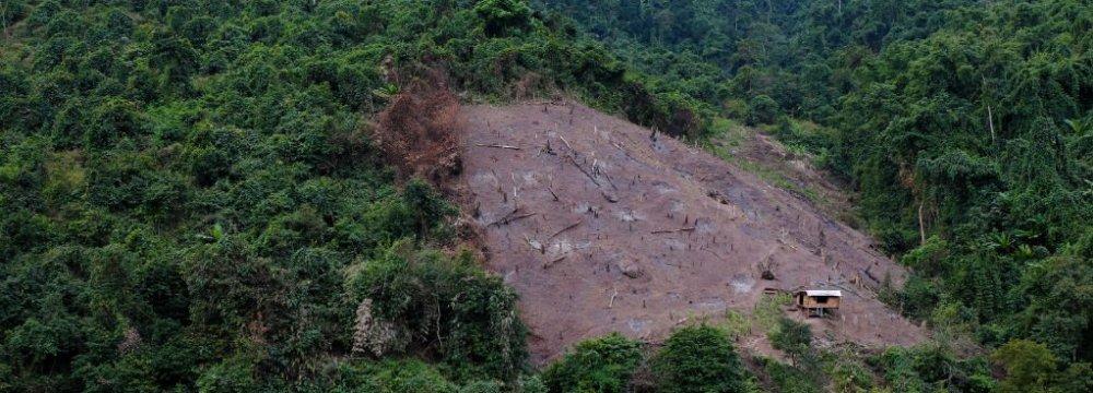10% of World's Wilderness Destroyed in 2 Decades