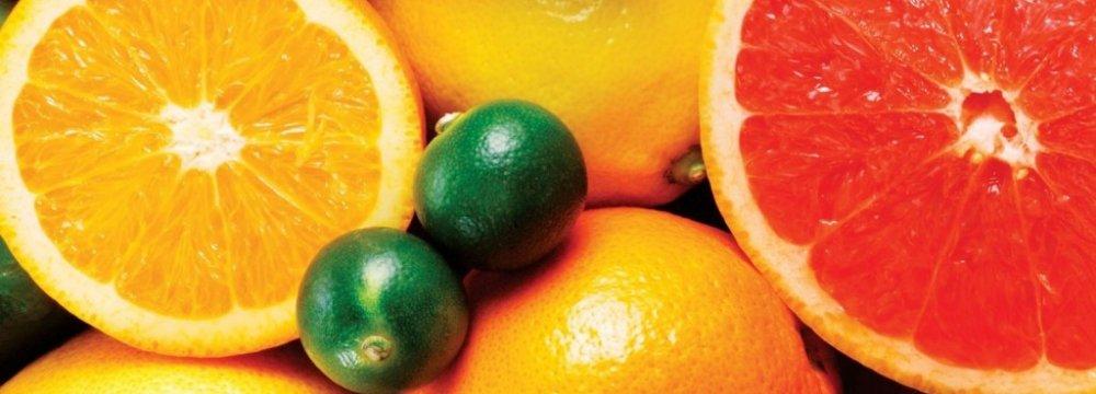 Tariffs Undercut Citrus Exports to Russia