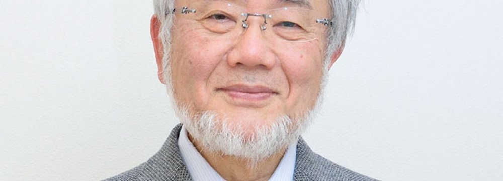 Japan Scientist Wins Nobel Medicine Prize