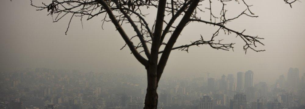 Clean Air & Publicity Stunts: Report