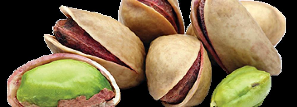 Iran's Q1 Pistachio Exports Hit $154m