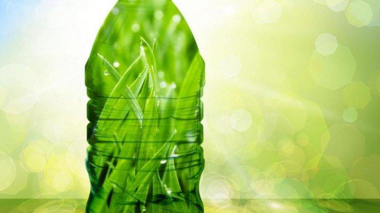 Bioplastic Technology Should Have Mitigating Effect   Financial ...