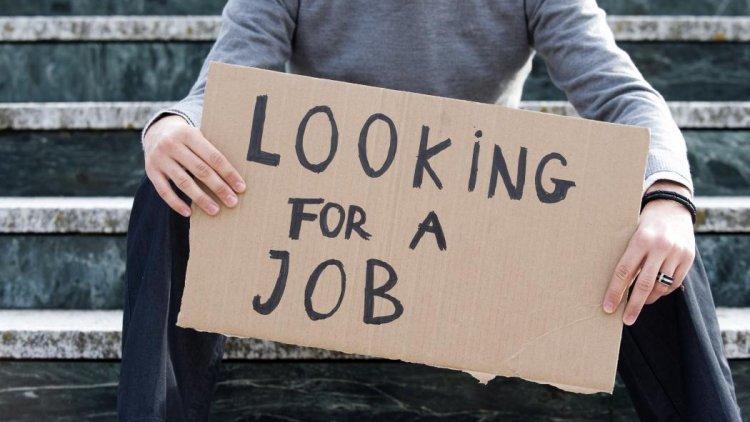 Female Joblessness Twice That of Men | Financial Tribune