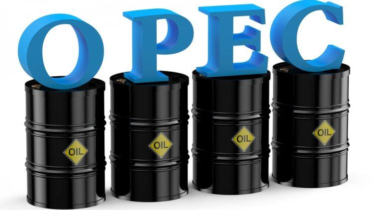 OPEC Forecasts Lower 2019 Crude Oil Demand | Financial Tribune