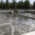 Tehran Municipality Obliged to Use Only Recycled Water for Greenspaces