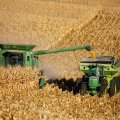 Agro Investment Down 10.8% Annually Over Eight Years