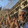 UN's Guterres Sees Gaza Humanitarian Crisis at Close Range