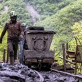 Coal Concentrate Output Up 11%
