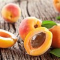 Apricot Exports Exceed $6m