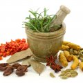Traditional Medicine Can Enrich Healthcare System