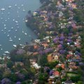 Australia House Prices Fall Further