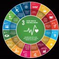 People's Participation Significant  in Sustainable Health, Development